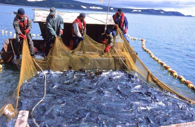 промтекс рыбалка